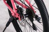 Garfo de Suspensão da estrutura em liga de alumínio 21 Velocidade Mountain Bike Personalizadas