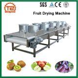 Le séchage de fruits et fruits de la machine La machine