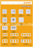 10A Two Gang Switch Ceramic Base