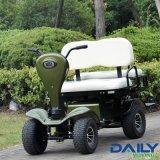 小型二重シートの電気ゴルフカート36V 1600W