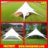 Fashion Star Shade Aluminium Single Pole Tent for Wedding Party