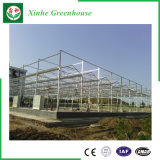 Парник Venlo пяди Muti самомоднейшей конструкции стеклянный для земледелия