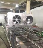 Equipamento de congelação rápida do túnel de IQF para peixes dos bolinhos de massa do camarão dos peixes