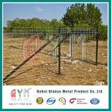 Скотины поголовья панели загородки лошади используемые стробом обнесли забором ферма