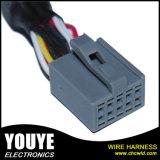 Usage du faisceau de câbles automobile pour Radio Acoustics