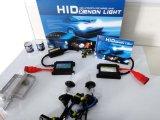 Car Conversation를 위한 AC 12V 35W H7 Head Lamp