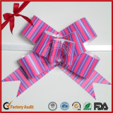Bogen packend, Bogen-Typen und Polyester, Polyester-materiellen Farbband-Bogen ziehen