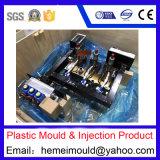 Il professionista ha personalizzato lo stampaggio ad iniezione di plastica della muffa