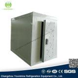 フルーツまたは飲料のための熱い販売の冷凍庫か低温貯蔵