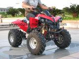 Nuevo estilo de Raptor 110cc/ATV 125cc