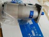 Pompa idraulica Cbnl-F532/F510-B di vendita diretta della fabbrica