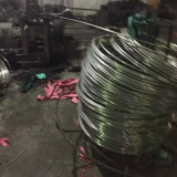 Tubo dell'acciaio inossidabile di ASTM A269 nei fornitori della Cina