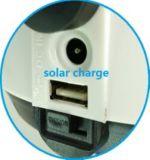 42 éclairage rechargeable de PCS SMD LED