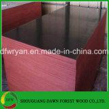 Madera contrachapada impermeable de la cara de la película, madera contrachapada marina, fábrica impermeable de la madera contrachapada de 18m m
