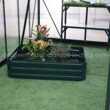 Conjunto rápido de aço exterior levantadas Jardim cama para o crescimento da planta (DSG1209030-G2)