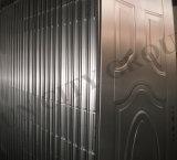 Nuovo portello d'acciaio di obbligazione di alta qualità e di disegno (SC-S037)