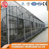 다중 경간 강철 구조물 유리 온실