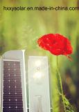 Hochwertiges Integrated Solar Street Lights Solar Outside Lights 100W