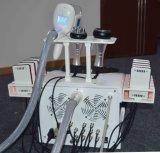 Lipo láser máquina de adelgazamiento de ultrasonidos de cavitación RF Cryolipolysis la pérdida de peso grasa disolviendo la máquina