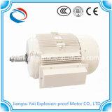 Ycchの耐圧防爆水によって冷却される4p-10p電動機