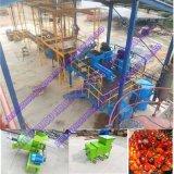 小さい容量のぬれたタイプ新しいやしフルーツの石油生産ラインの完全なプロジェクト
