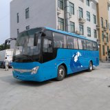 10.5mの42-50seats乗客後部エンジンの観光バスのコーチのディーゼルおよびCNG
