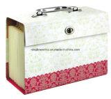 Скоросшиватель бумажного архива высокого качества расширяя/архив случая