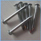 Guangzhou galvanizado prego de ferro comum para a construção