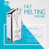 Fette Fettspaltung Dissove Hohlraumbildung HF-Cryo, die Maschine abnimmt