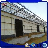 Costruzioni facili leggere dell'acciaio dell'ampia luce dell'installazione di basso costo del metallo