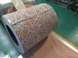 PPGI Prepainted bobinas com Z30-Z150