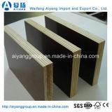 La base de calidad superior de Combi toda la película de las tallas hizo frente a la madera contrachapada