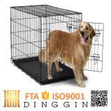 개를 위한 애완 동물 전시 감금소