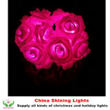 결혼식 휴일 정원 훈장이 꽃에 의하여 로즈 LED 점화한다