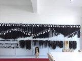 Virgem de cabelo humano 360 Rendas Encerramento no preço de venda por grosso (reto)