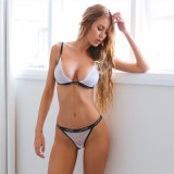 Sexy transparency Wearing Lace Underwear for Women Lingerie set