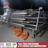 La ferme avicole a employé un type cages de poulet de pondeuse d'échelle