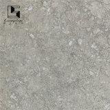 Baldosas cerámicas del cemento gris del color 300*300