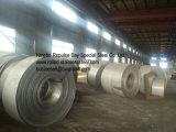 Qualitäts-Edelstahl-Streifen verwendet in der Lebensmittelindustrie