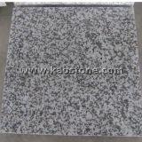 China poetste Grijs/Grijs Graniet G439 voor de Tegel van de Muur/van de Vloer op