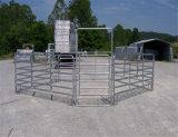 Alta comitato del bestiame galvanizzato visibilità Bestselling