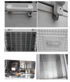 congélateur horizontal de la poitrine 446L avec le blocage de porte