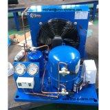 Compressori del rotolo per il frigorifero con R404A (SZ/SY/MP, R134A/R407c/R22)