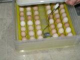 De Ce Duidelijke Incubator van het Ei van de Kip voor het Uitbroeden van 96 Eieren (ew-96)