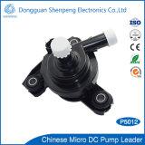 24 de Micro- BLDC van de volt CentrifugaalPomp van het Water voor Auto/Auto/Vechicle