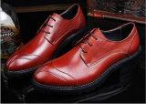 O modelo novo de China real ata acima sapatas dos calçados