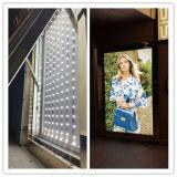 módulos brillantes estupendos del contraluz LED del CREE 220lm 3W para las muestras/las muestras Lightbox al aire libre del LED del mercado