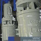 Het Hoogtepunt Met veerwerking uit gegoten staal droeg de Afblaasklep van de Veiligheid van het Type