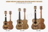 Maple Ukulele Aiersi сопрано Spalted миниатюрных инструментов
