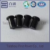 ribattino d'acciaio solido capo piano di colore nero dello zinco di 5.5X9.6mm
